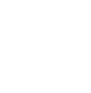 Paper to Trees Logo
